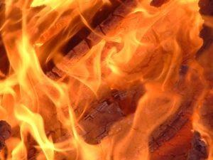 В Гатчинском районе сгорели две бани